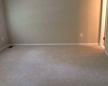 Carpet For Room